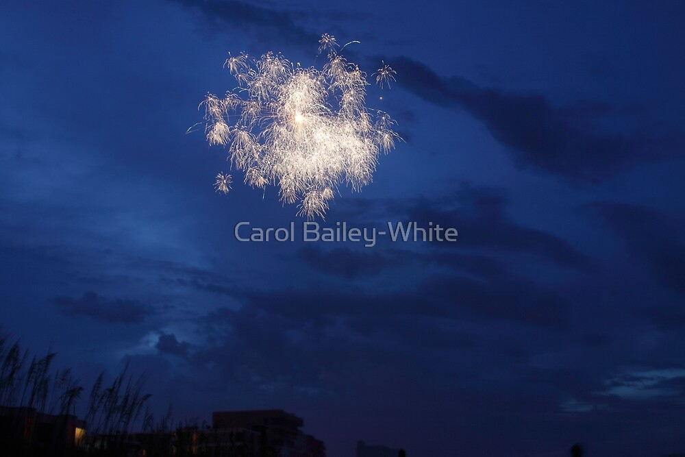 Shower of Sparks by Carol Bailey-White