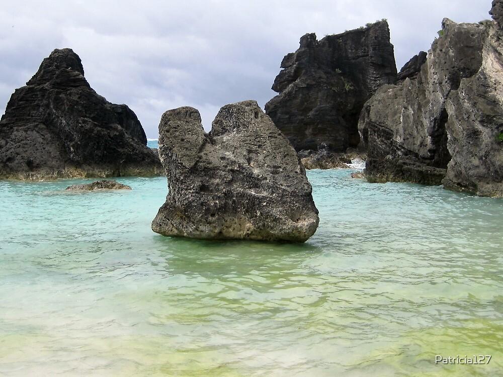 Horseshoe Bay, Bermuda by Patricia127
