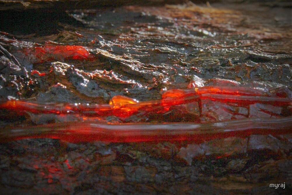 Flowing Red by myraj