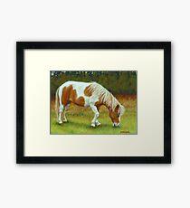 Tranquility-Mini Pony Mare Framed Print