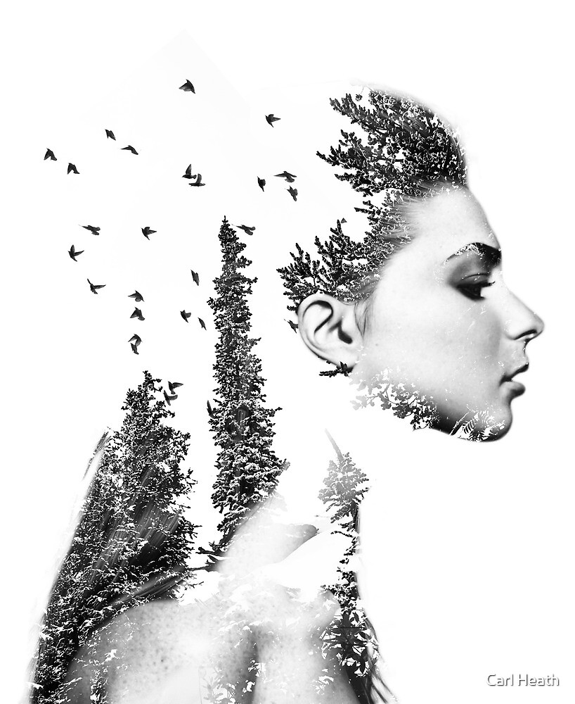 Lady of the Trees by Carl Heath