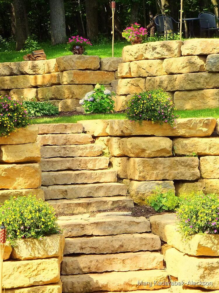 Stairs in My Backyard by Mary Kaderabek-Aleckson