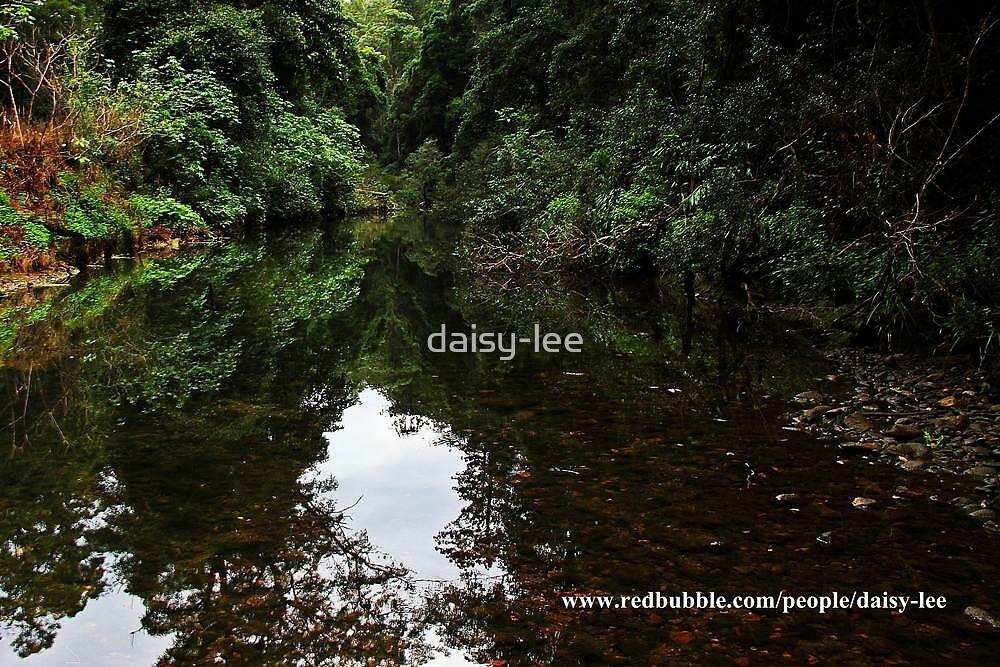 Reflection on Neurum creek, Mt Mee, Queensland  by daisy-lee