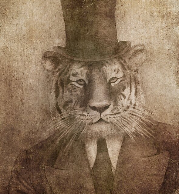 Sir Tiger by Terry  Fan