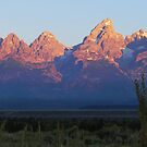 ~ Grand Tetons National Park ~ At Sunrise ~ by Brion Marcum