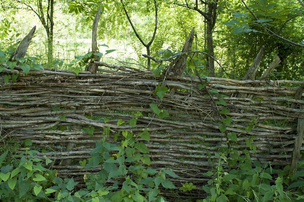 wooden fence by slavikostadinov