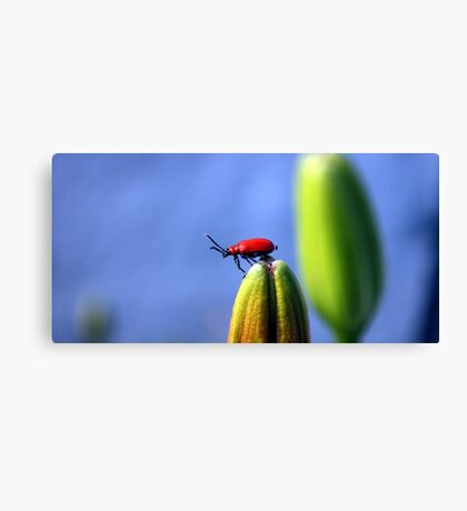 I'M KING OF THE WORLD! Canvas Print