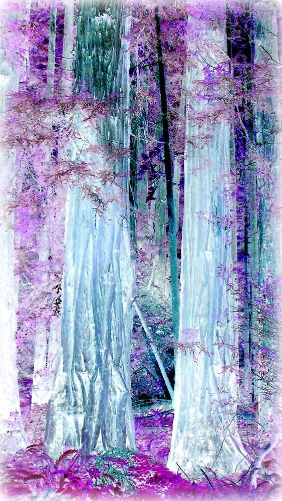 Muir Woods Fantastica~ by GraNadur