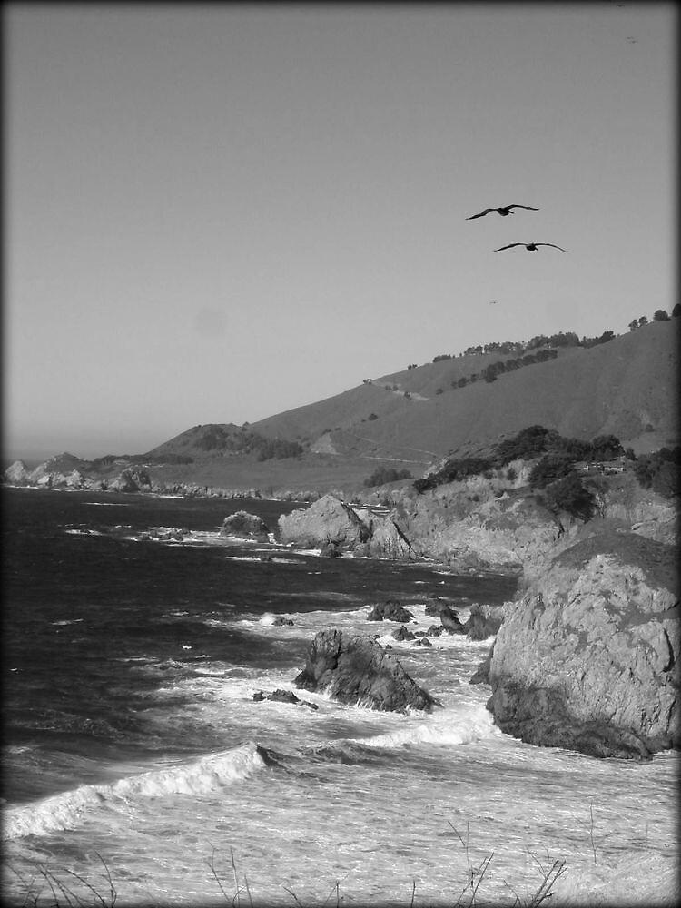 Big Sur Spectacular~ by GraNadur