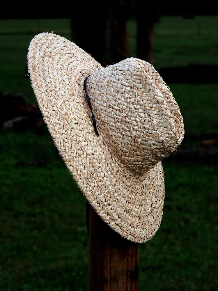 Straw Hat by Karen Harrison