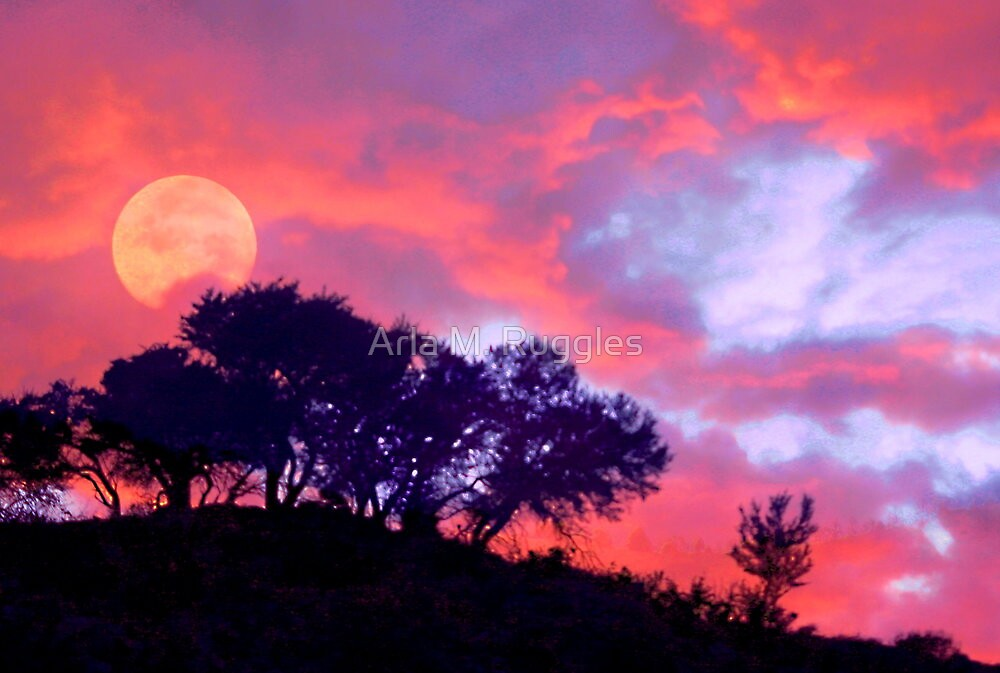 Mahogany Moon by Arla M. Ruggles