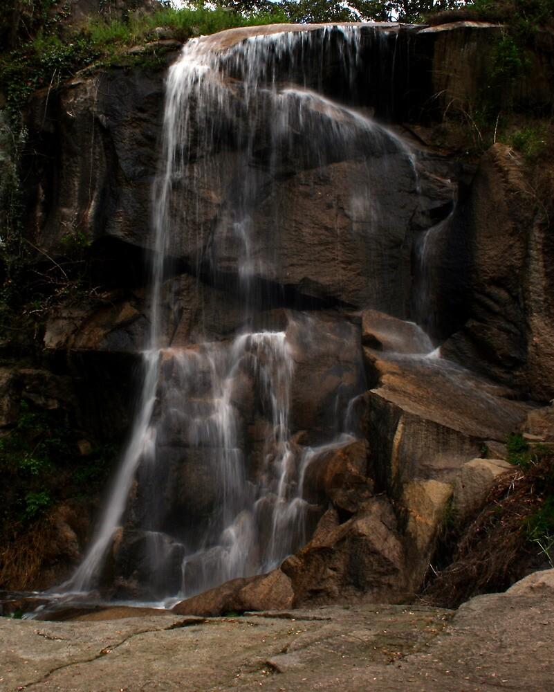 Maymont Waterfall by Karen Harrison