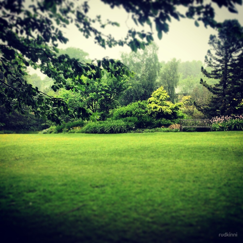 Harlow Carr - rainy day! by rudkinni