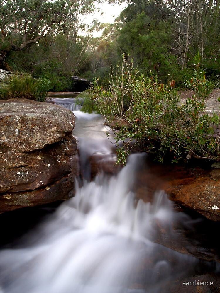 Australia falls by aambience