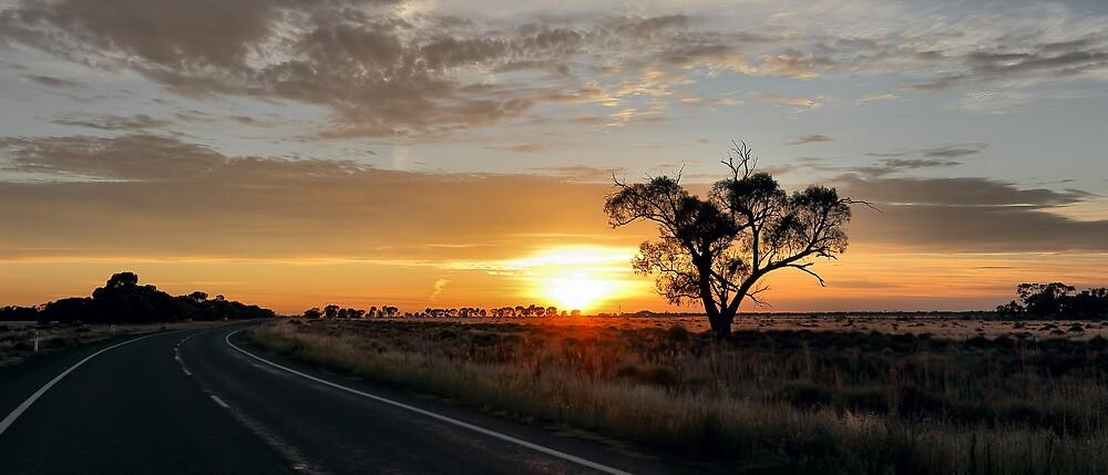 Sturt Sunrise by Mark Cooper