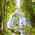 Nelson Falls - Tasmania by pennyswork