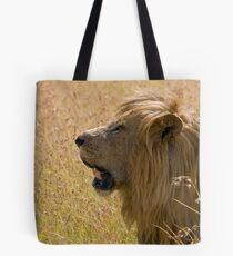 Male lion Tote Bag