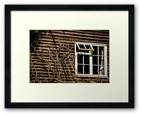 Open Window by mlphoto
