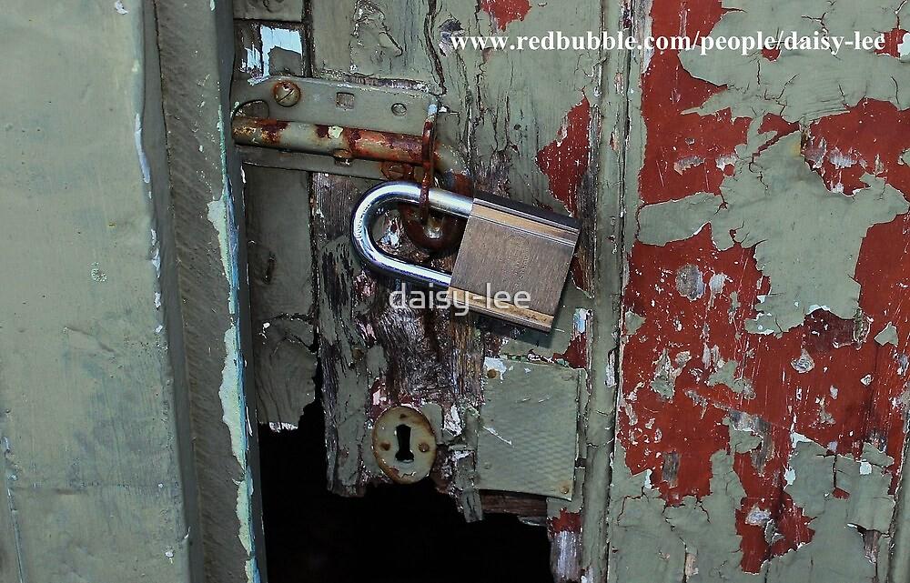 Old door new lock by daisy-lee