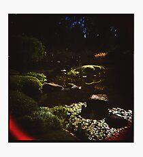 Holga Botanic Garden #2 Photographic Print