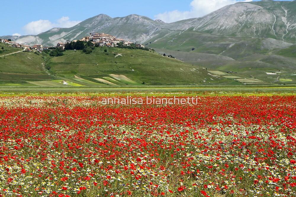Castelluccio di Norcia by annalisa bianchetti