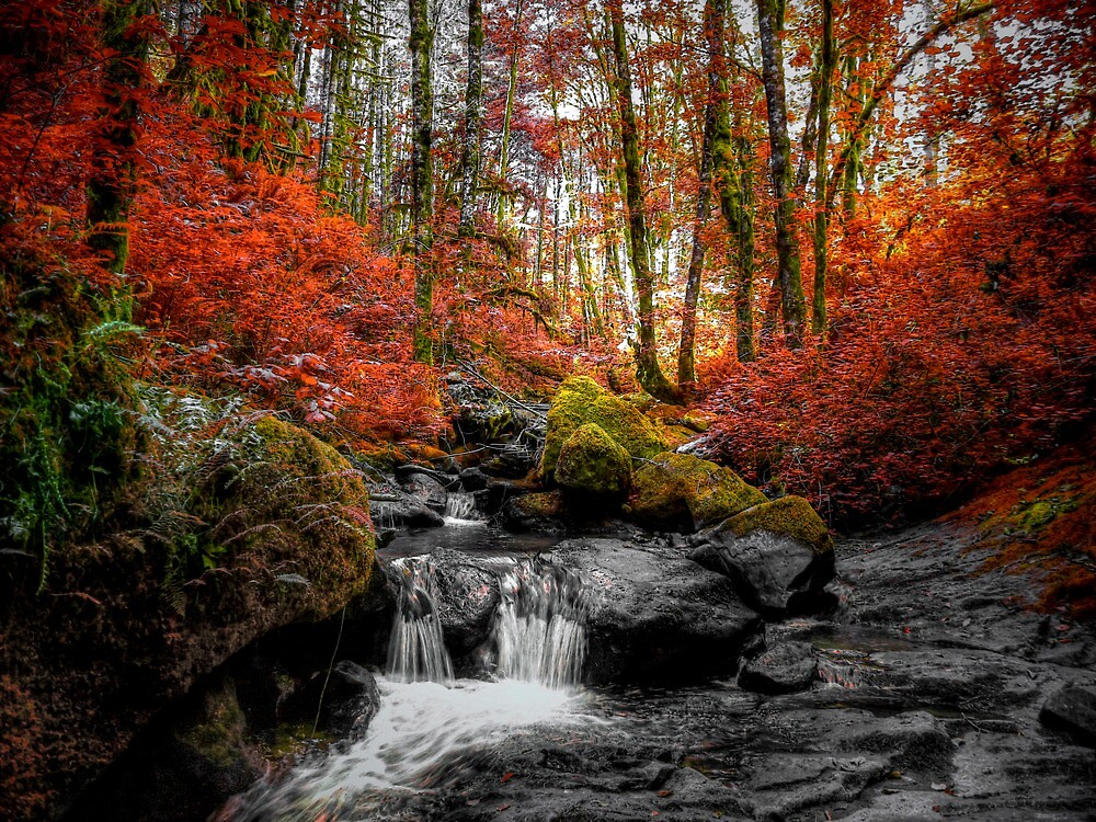 Happy Hour by Charles & Patricia   Harkins ~ Picture Oregon