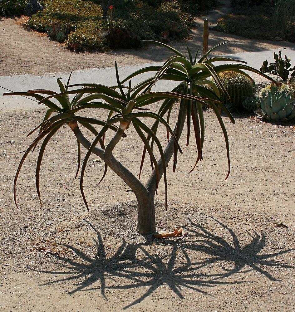 Triplets in the Desert by Karen Harrison