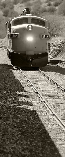 VERDE CANYON RAILROAD WILDERNESS TRAIN ARIZONA APRIL 2012 by photographized