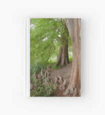 Under the swamp cypresses Hardcover Journal
