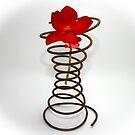coil by Lynne Prestebak
