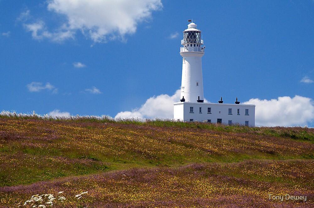 Flanborough Head Lighthouse by Tony Dewey