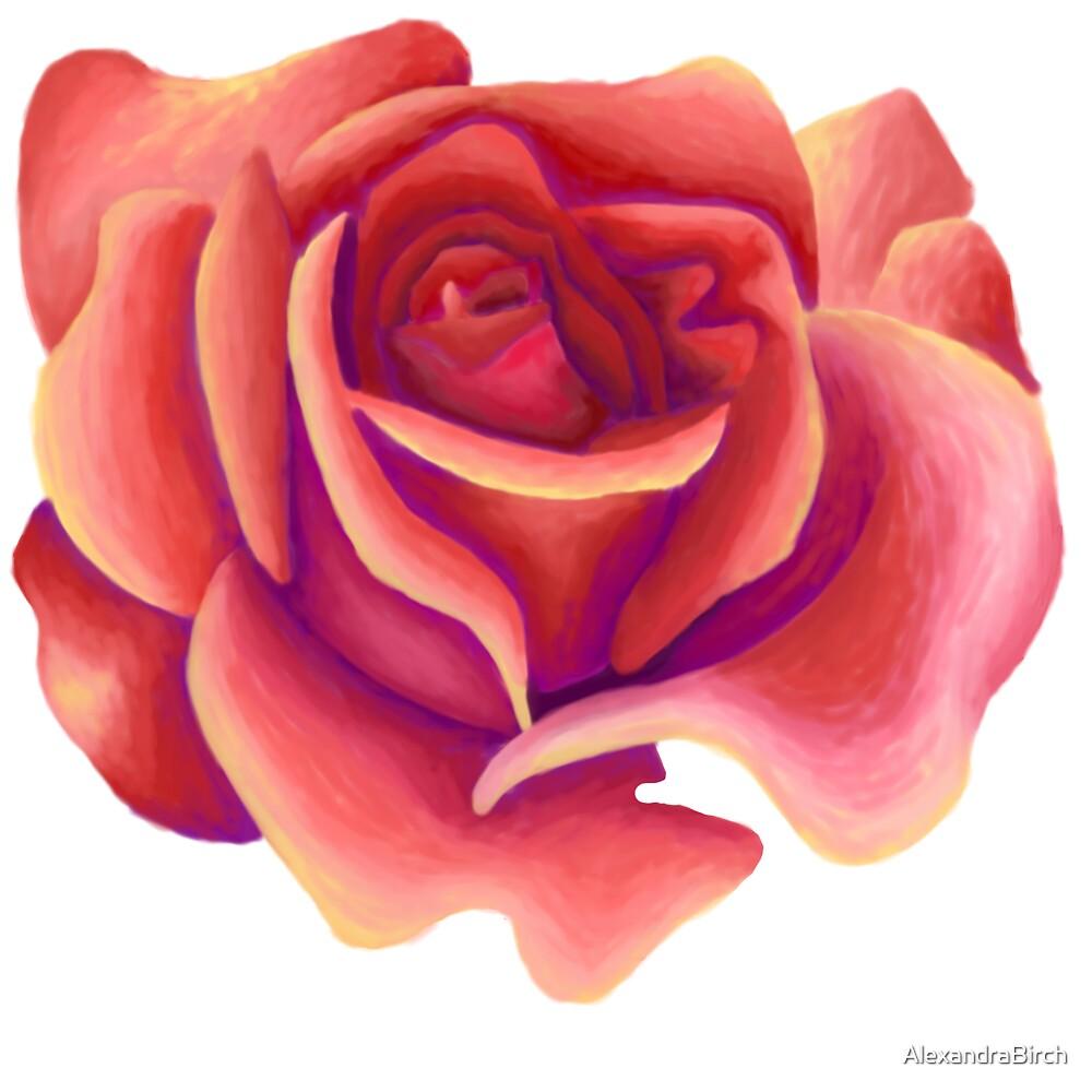 Rose 1 by AlexandraBirch