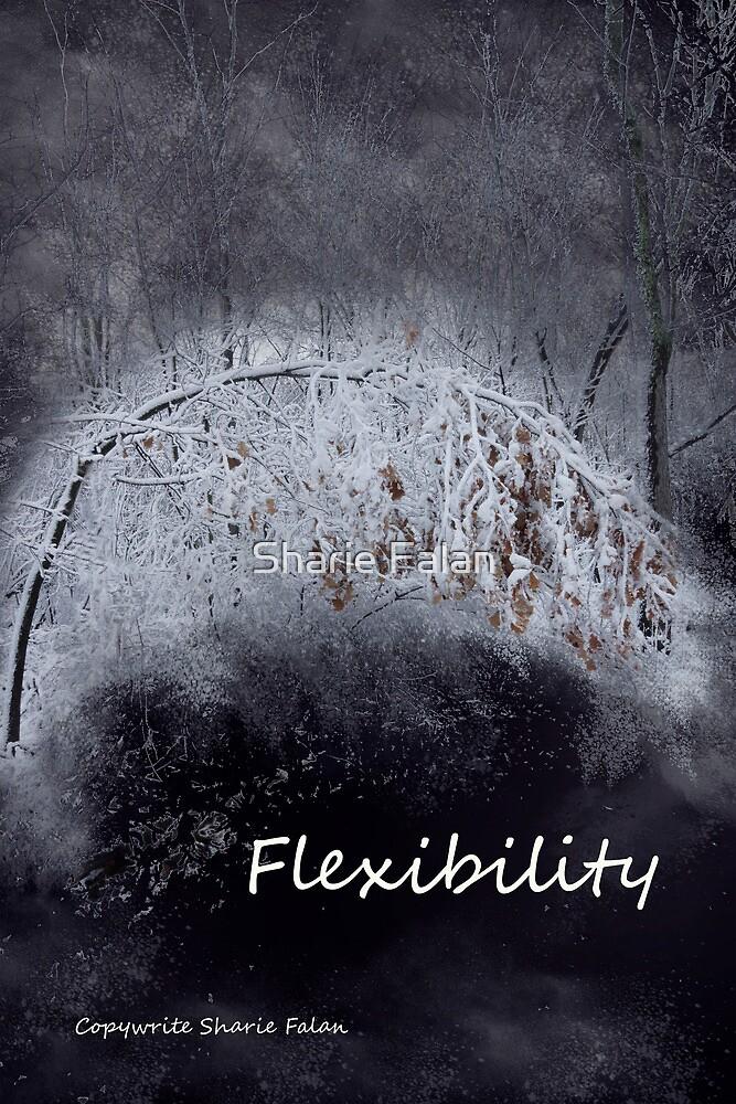 Flexibility by Sharie Falan