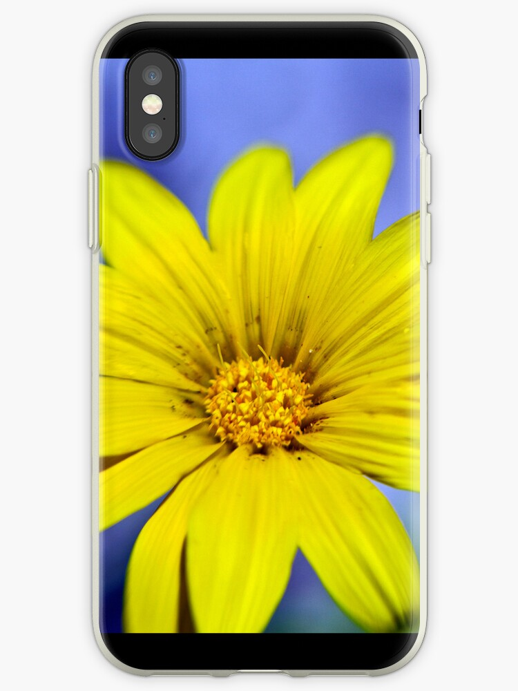 Itsy Bitsy Yellow Flower - iPhone 4 (&3) & iPod Cover by Bryan Freeman