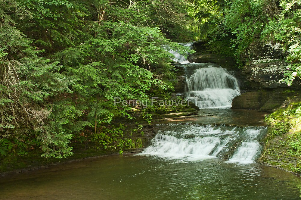 Falls in Ithaca NY by Penny Fawver