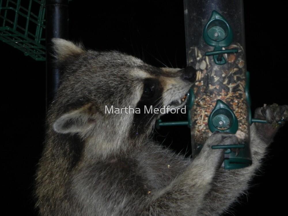 Midnight Thievery by Martha Medford