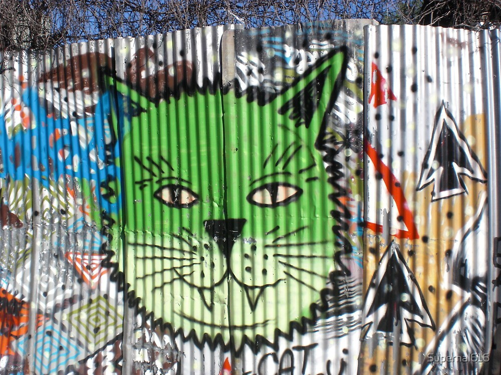 Brookyln Graffiti by Supernal616