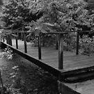 Bridge by Floggingdollie