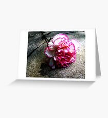 Pink Carnation No. 1# Greeting Card