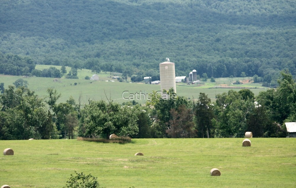 Farm Land by Cathy Cale