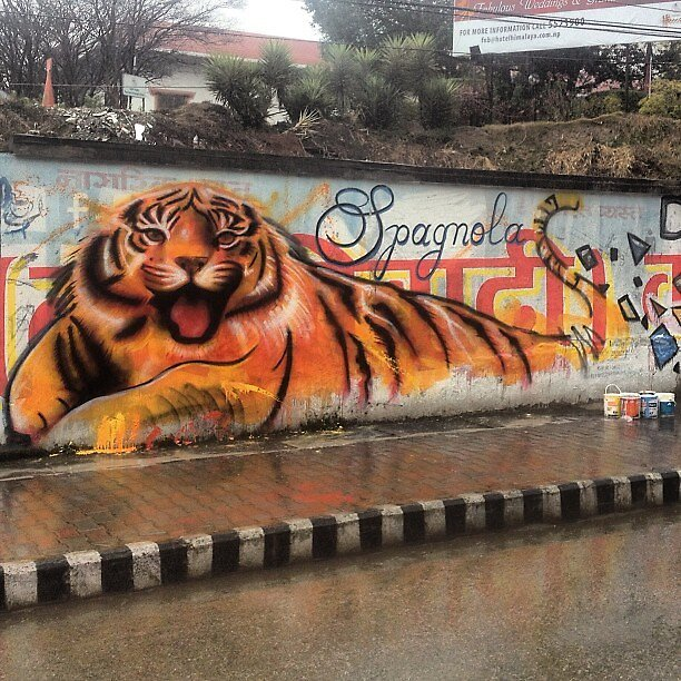 happy cat on communist wall in nepal by dustinspagnola