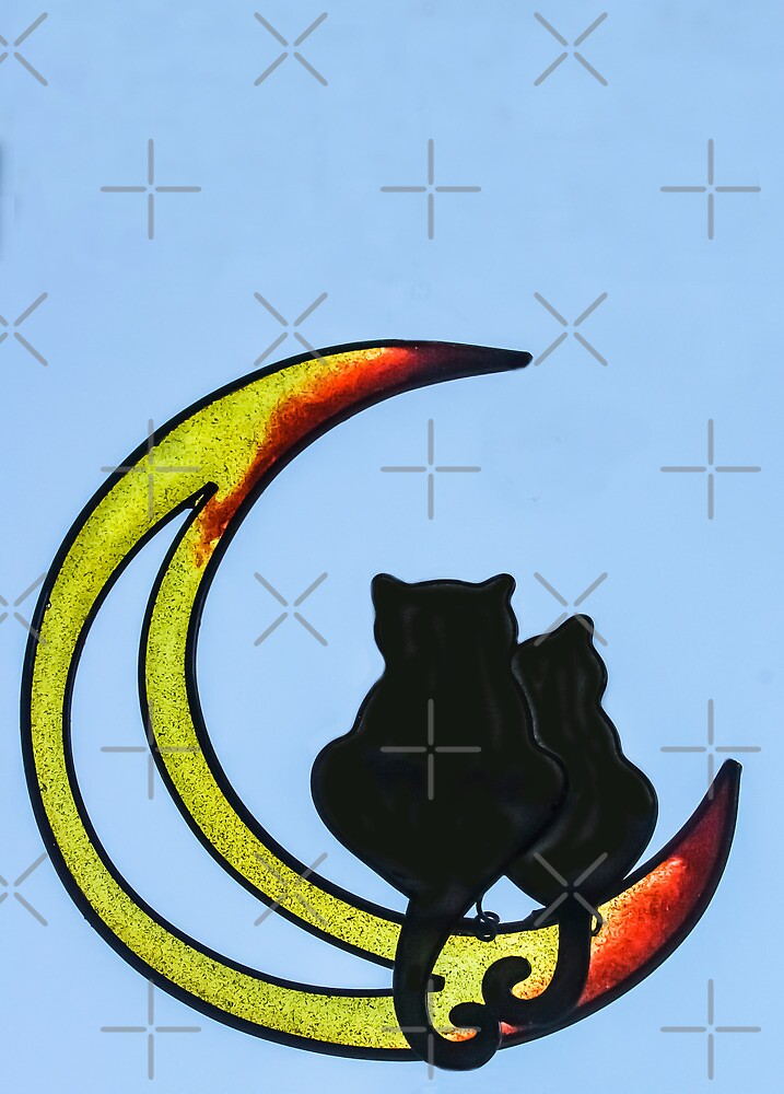 Moon Cats  by Heather Friedman