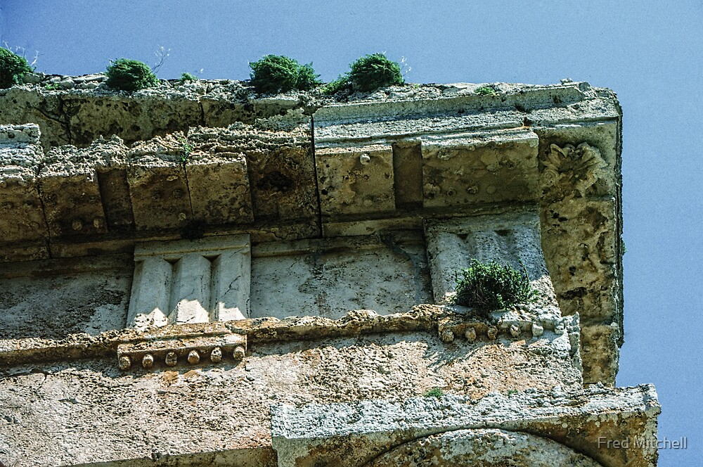 Top corner of wall temple Segesta Sicily 19840325 0053  by Fred Mitchell
