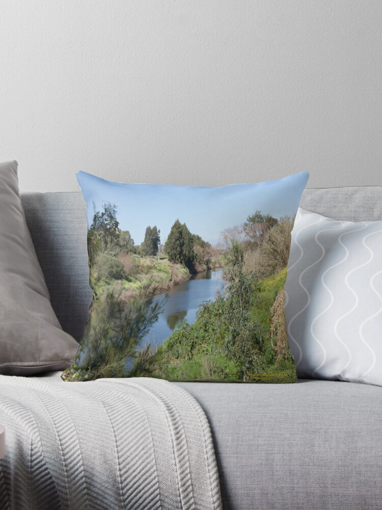 Paterson River, Paterson NSW Australia by SNPenfold