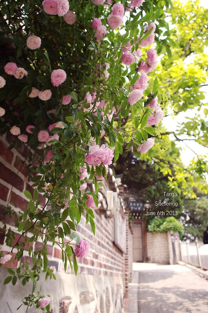 Flowers by Eva  Tang