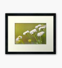 """""""White Flowers"""" Framed Print"""