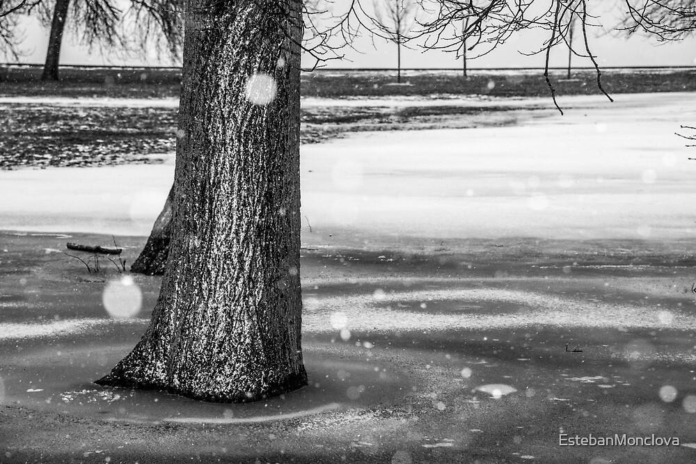 Winter by EstebanMonclova