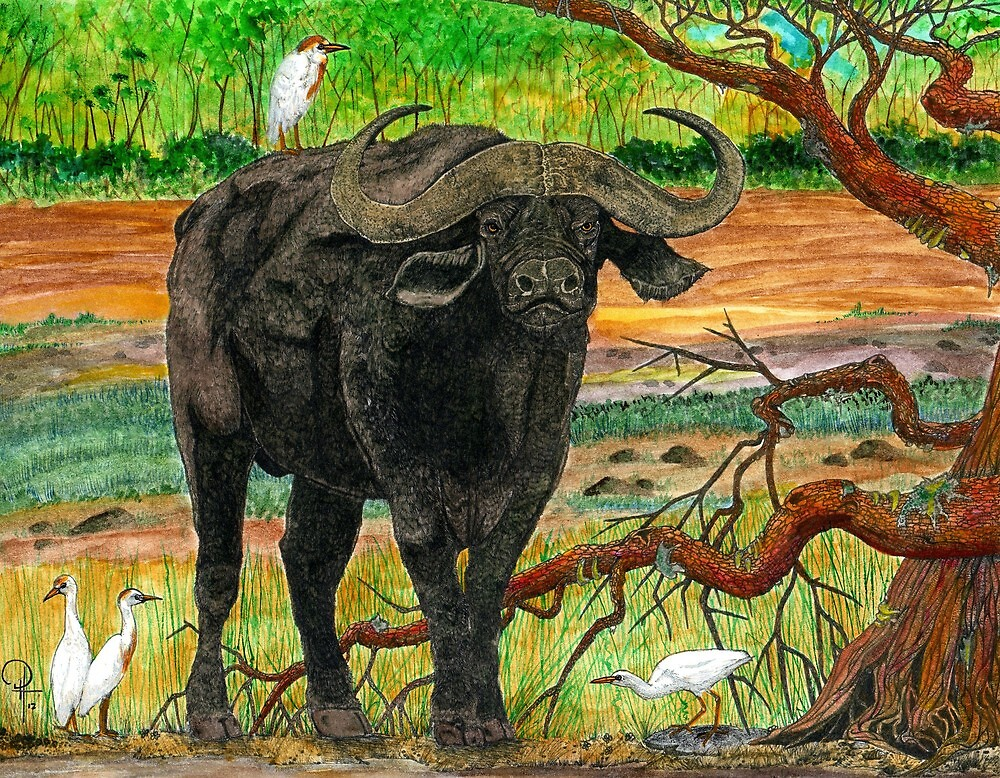 King of the Cape Buffalo by Doug Hiser