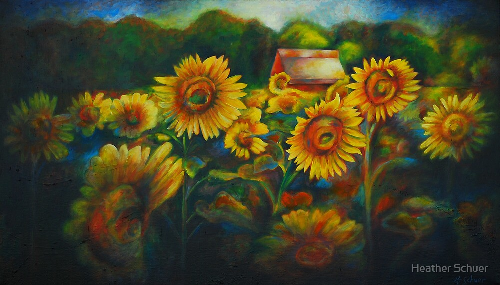 Sun Flower Field. by Heather Schuer