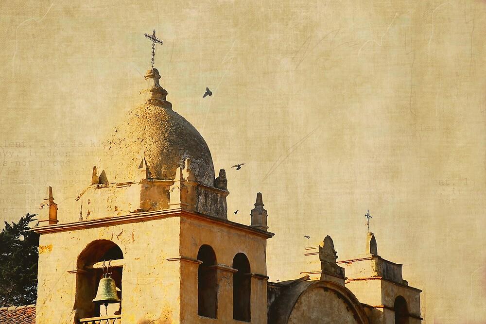 Carmel Mission, Carmel-by-the-Sea, Ca  Birds by korinneleigh